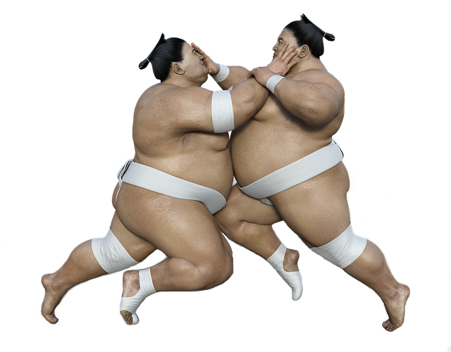 two sumo representing competition